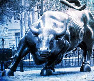 Stock Market Bull